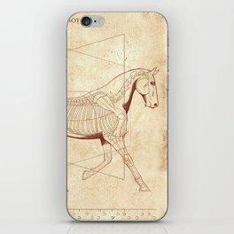 Da Vinci Horse: The Trot Revealed iPhone Skin