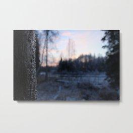 Cabin Frost Metal Print