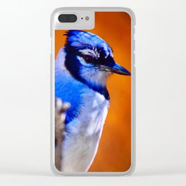 Bleu J Clear iPhone Case