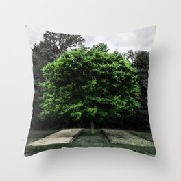Couldn't Stand to be Alone Without You Throw Pillow