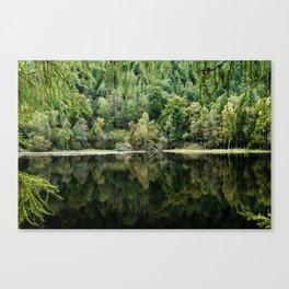 Green Loch Canvas Print