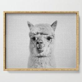 Alpaca - Black & White Serving Tray