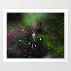 Come Into My Web Art Print