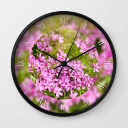 Phlox subulata pink flowering macro. Wall Clock