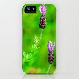 Lavender Two Flowers iPhone Case