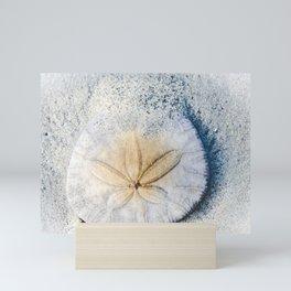 Sandy Dollar Mini Art Print