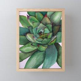 Watercolour succulent petals Framed Mini Art Print