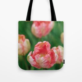 Orange Parrot Tulips Tote Bag