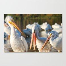 Three Birds Walk Into A Bar Canvas Print