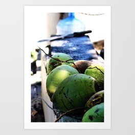 Coconut Fresh Art Print