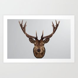 Low Poly Wild Stag Art Print