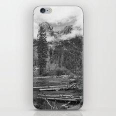 Birch Hallow, Teton Mountains iPhone & iPod Skin