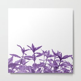 Epic Purple Long Vine Leaves Abstract Minimalist Metal Print