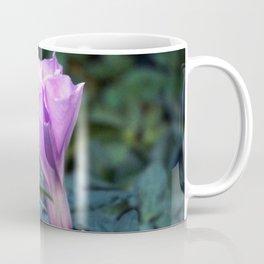 Fairy's Home Coffee Mug