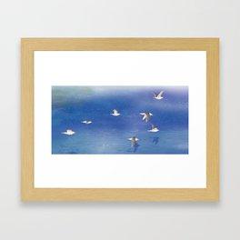 Black-tailed Gull | Miharu Shirahata Framed Art Print