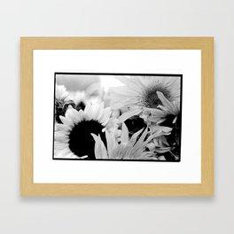 Donna Framed Art Print