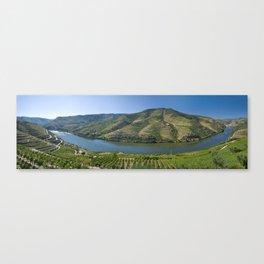Douro Valley vineyards Canvas Print