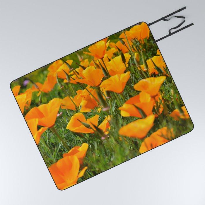 California Poppies Super Bloom Picnic Blanket