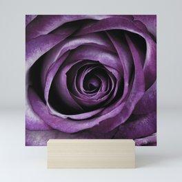 Purple Rose Decorative Flower Mini Art Print