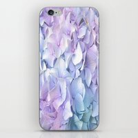 pastel iPhone & iPod Skins featuring Soft Pastel Hydrangea by Judy Palkimas