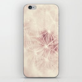 dandelion postcard iPhone Skin