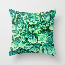 Desert Succulents Throw Pillow