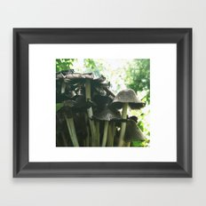 Magic mushrooms series - take 1 Framed Art Print
