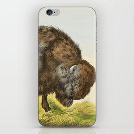 Vintage Bison Illustration iPhone Skin