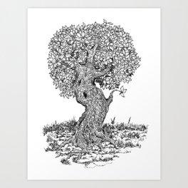 Ancient Tree II Art Print