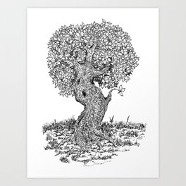 Ancient Tree II Art Print