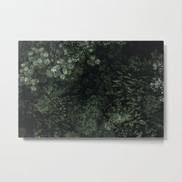 tropical ii / costa rica Metal Print