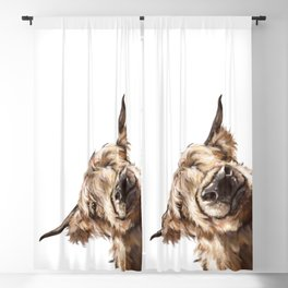 Sneaky Highland Cow Blackout Curtain