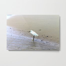 Toes in the Water Metal Print