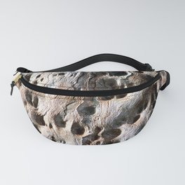Old Eucalyptus Tree Wood Fanny Pack
