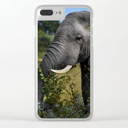 Elephant Early Morning Snack Clear iPhone Case