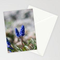 Grape Hyacinth II Stationery Cards