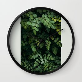 Growth Wall Clock