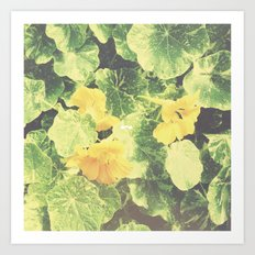 Emerald Summer. Art Print