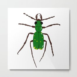 Green tiger beetle Metal Print
