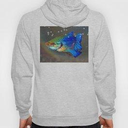 Betta Fish Hoody