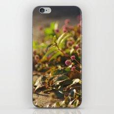 gaia iPhone & iPod Skin