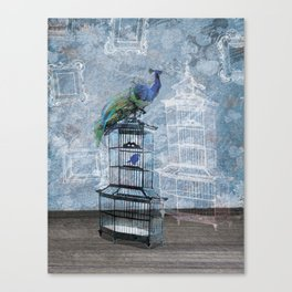 Quirky Peacock and Birdcage  Canvas Print