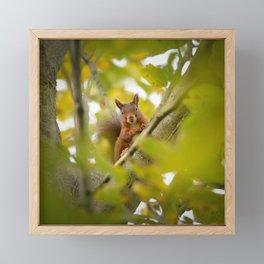 Trees are Home Framed Mini Art Print