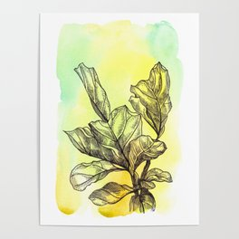 Plant Series: Green Poster