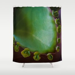 Mother of Millions Shower Curtain