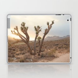 A Lovely Sunset Laptop & iPad Skin