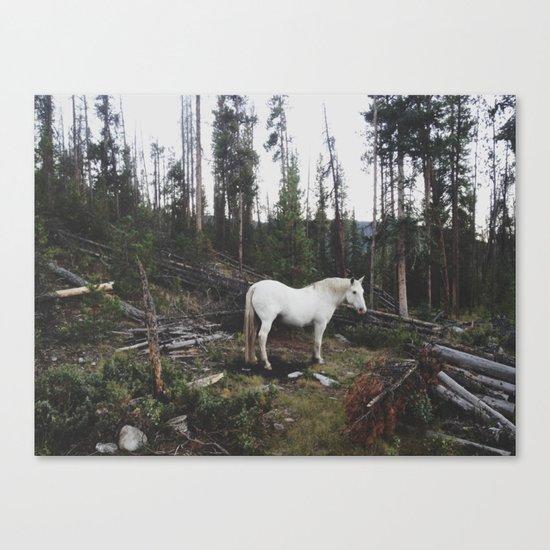 The White Horse Canvas Print
