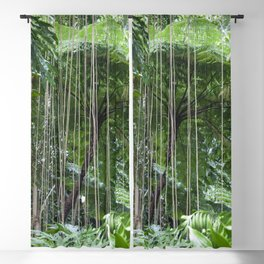 Rainforest umbrella Blackout Curtain