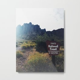 Tonto National Forest, Arizona Metal Print