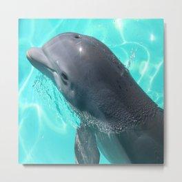 Baby Dolphin Profile Metal Print